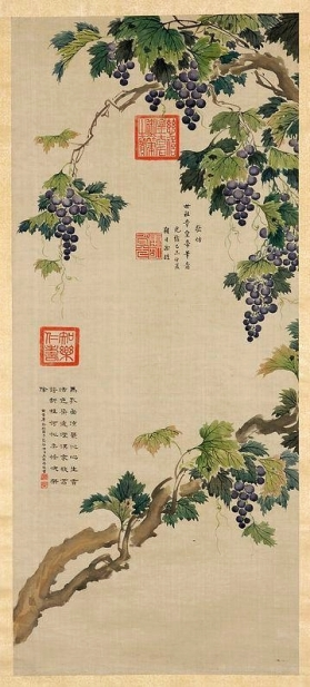 Cixi_Vines_with_fruit